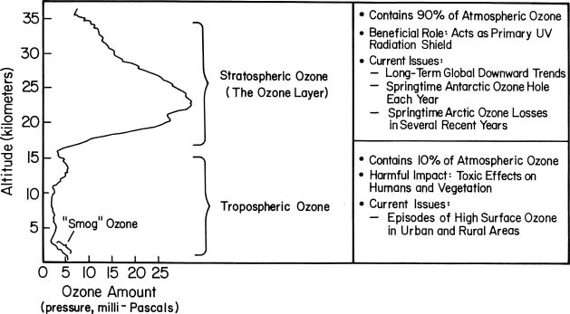 http://www.esrl.noaa.gov/csd/assessments/ozone/1998/images/fig_faq01.jpg