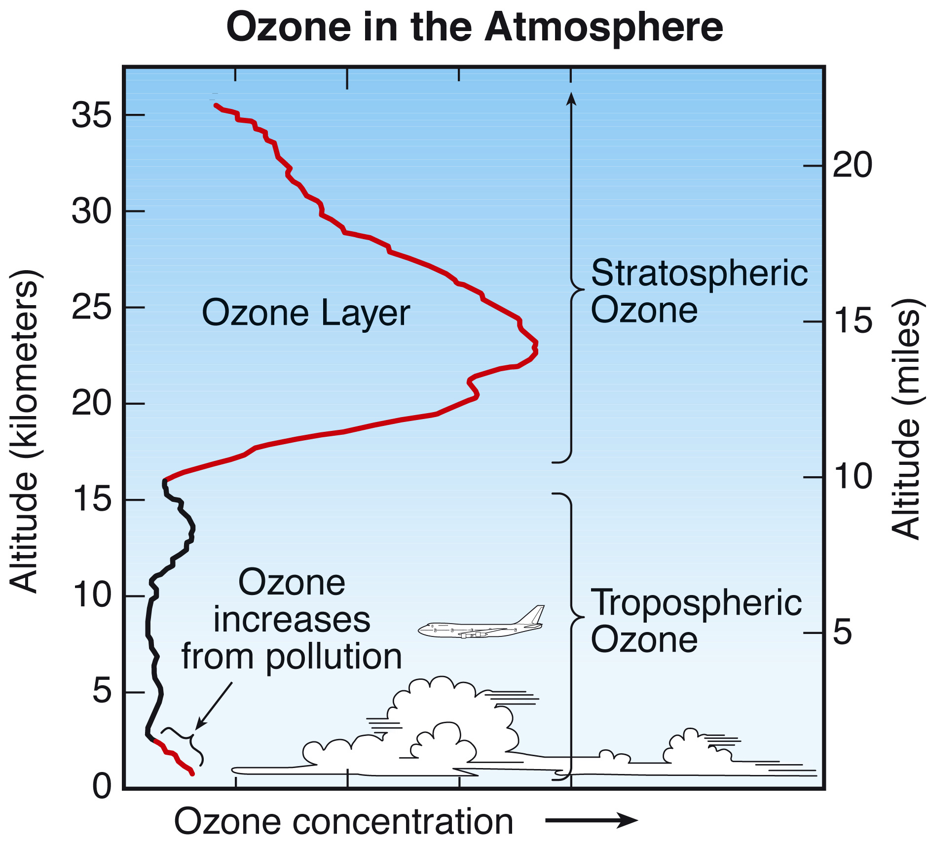 an analysis of a hole in the theory about the ozone layer A hole in the earth's ozone layer that forms over antarctica each september due to warm air was the smallest this year since 1988, scientists from nasa and the national oceanic and atmospheric administration announced on friday according to nasa, the ozone hole reached its peak extent on september 11.