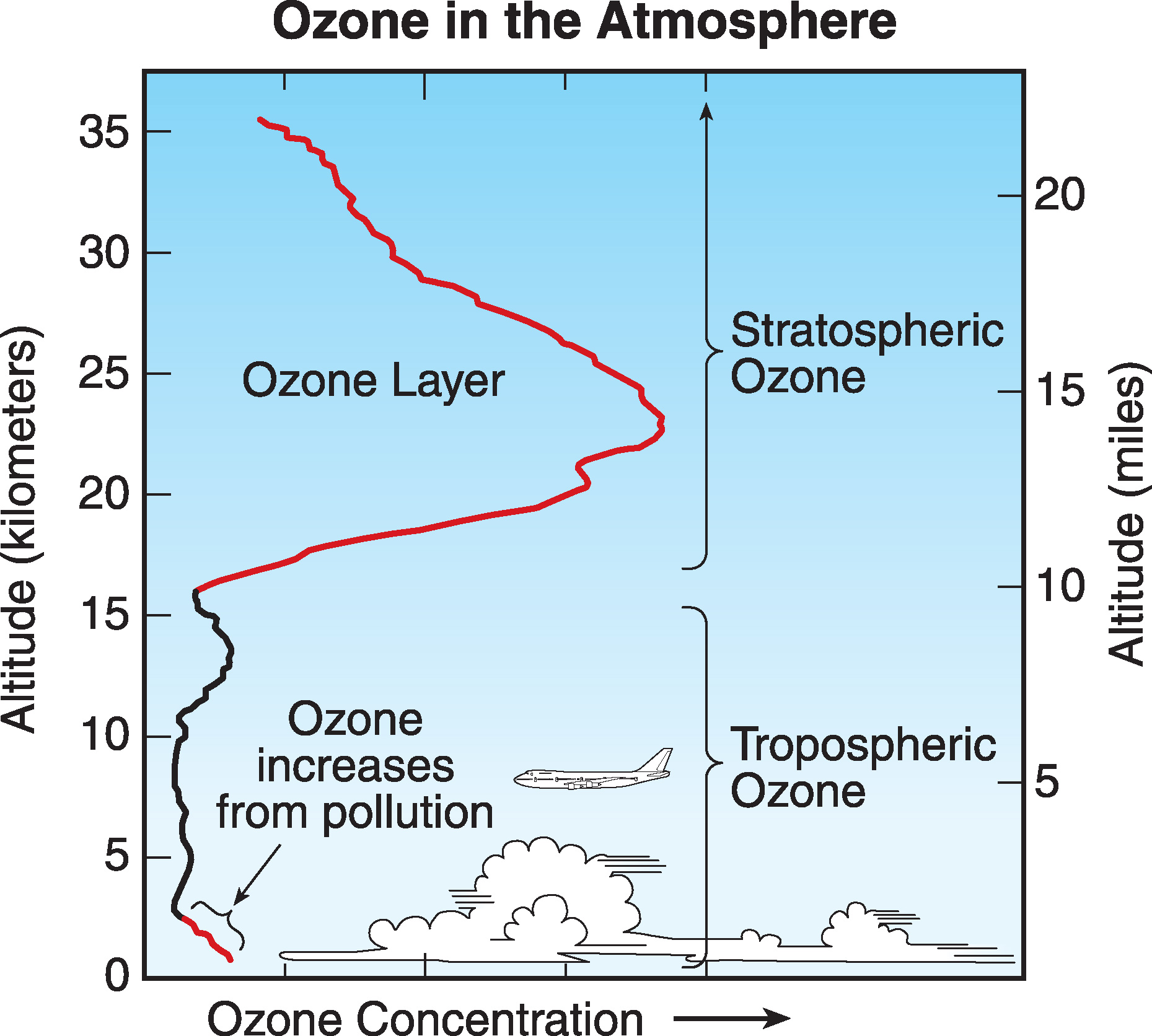 Scientific Assessment Of Ozone Depletion 2006 Twenty Questions And