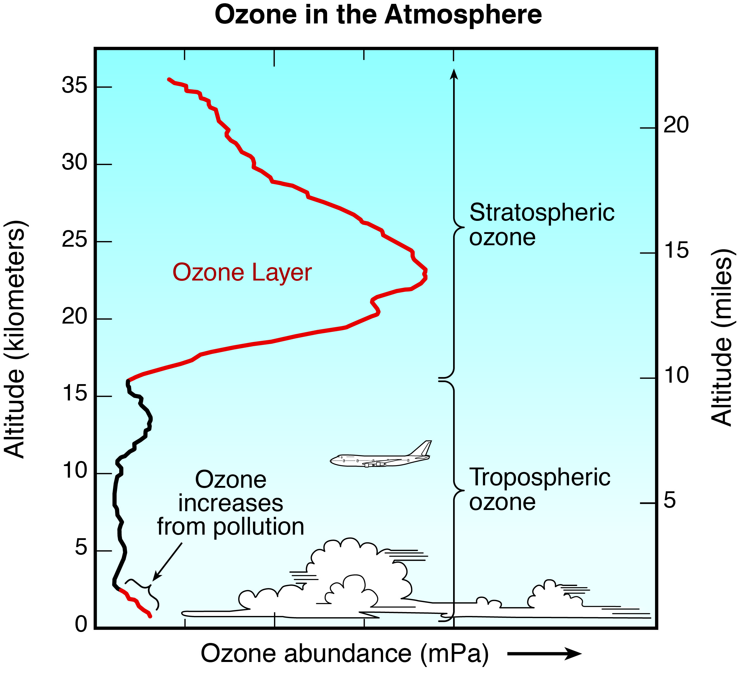 an introduction to the poisoning of the earths ozone layer Why the ozone layer is vital to life on earth the ozone layer is a protective shield that blocks the sun's harmful ultraviolet rays from  protecting the ozone layer.