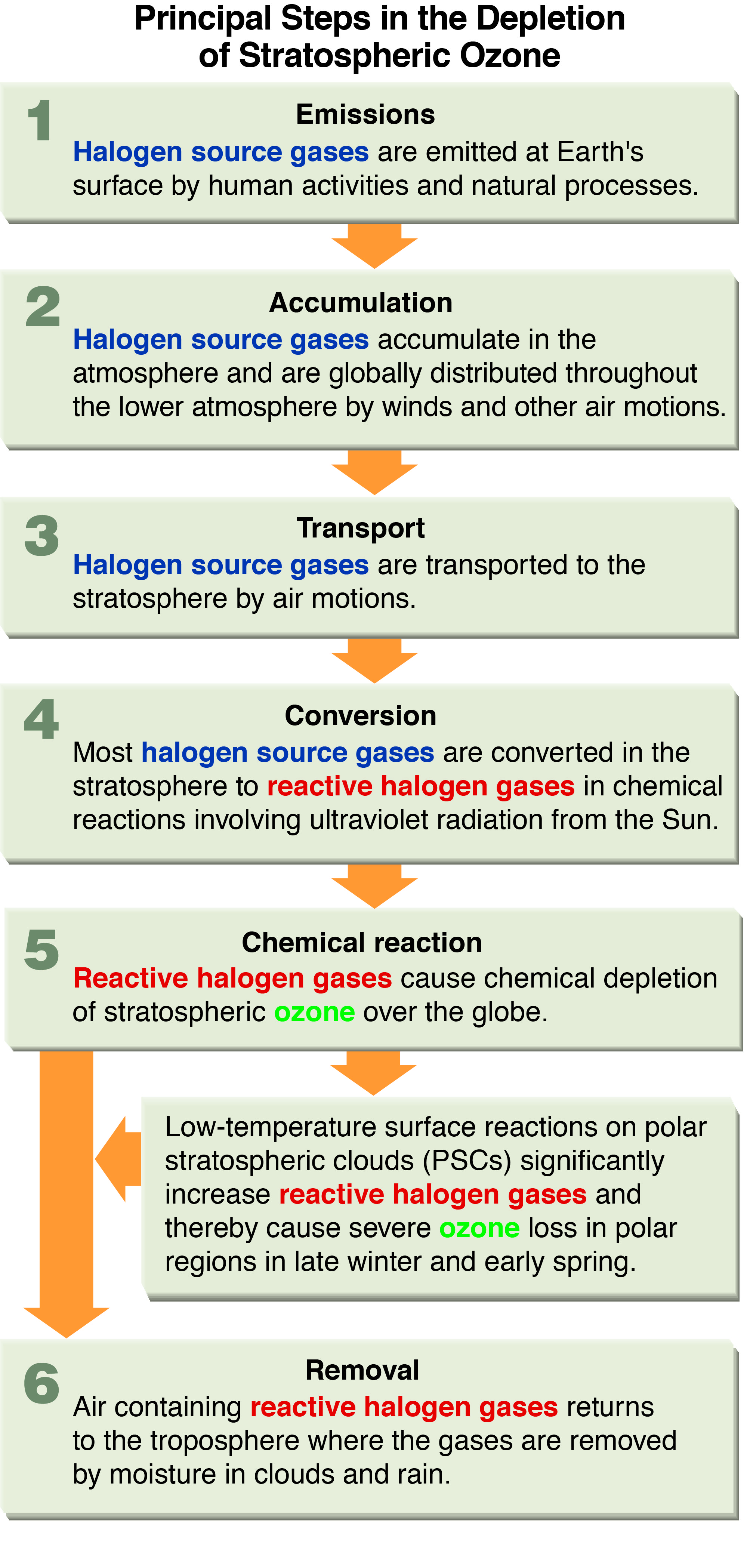 scientific assessment of ozone depletion twenty questions figure q6 1 eps small jpeg large