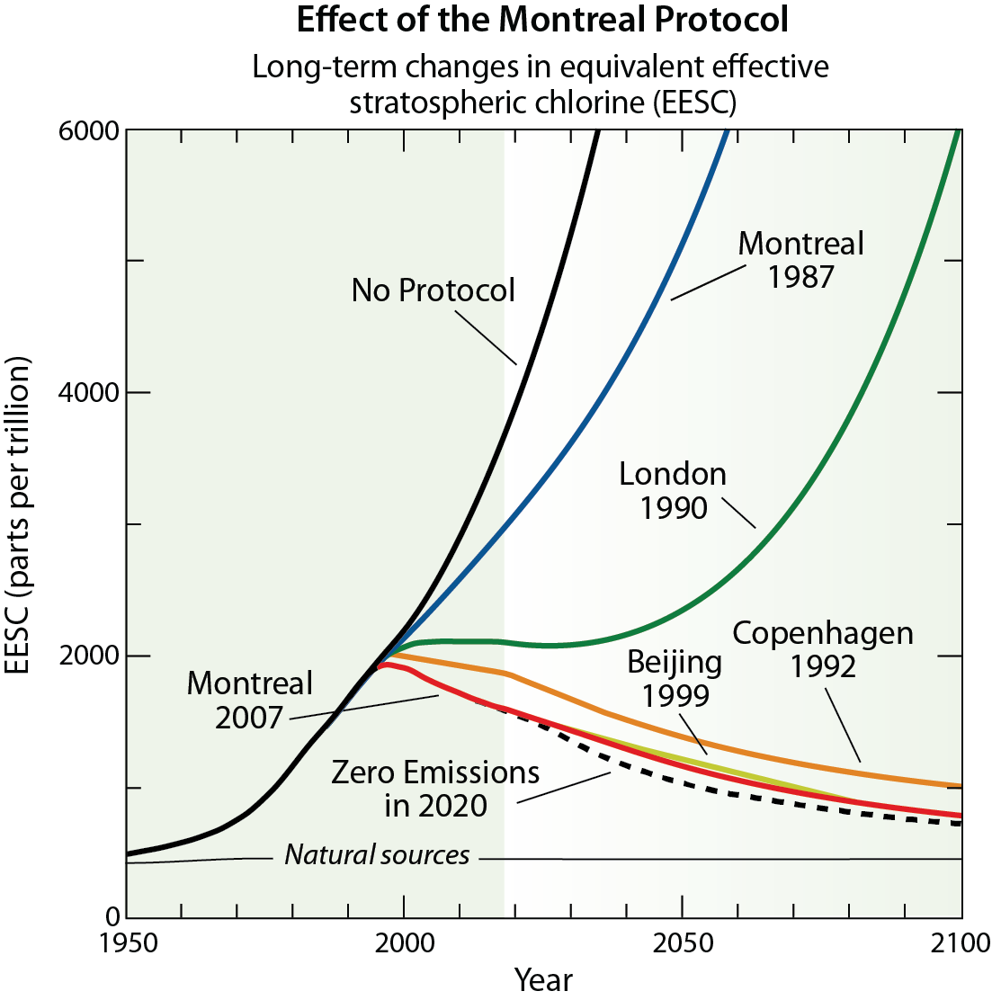 EEffect of the Montreal Protocol