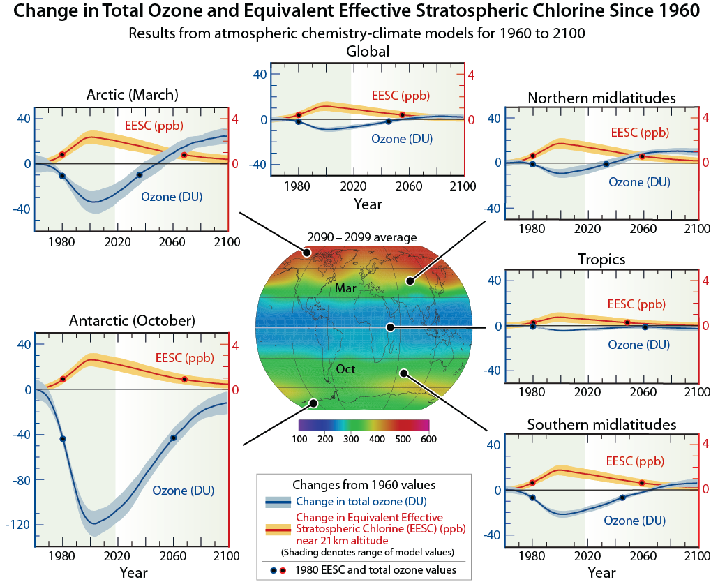 Change in Total Ozone and Equivalent Effective Stratospheric Chlorine Since 1960